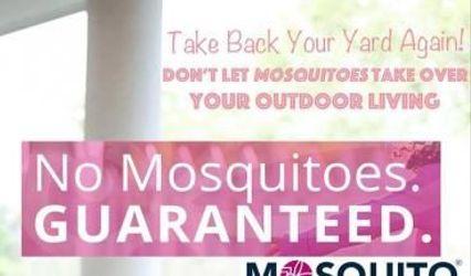 The Mosquito Authority