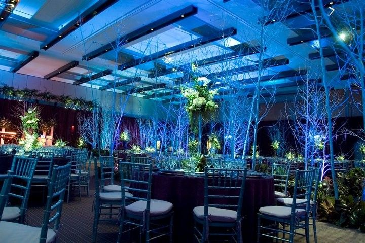 Blue reception lighting