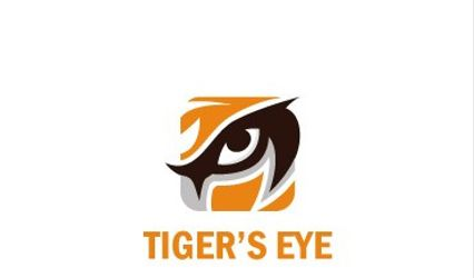 Tiger's Eye Dj's