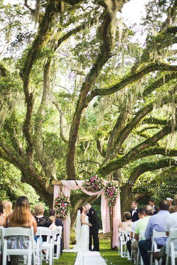 Wedding under the Oak trees