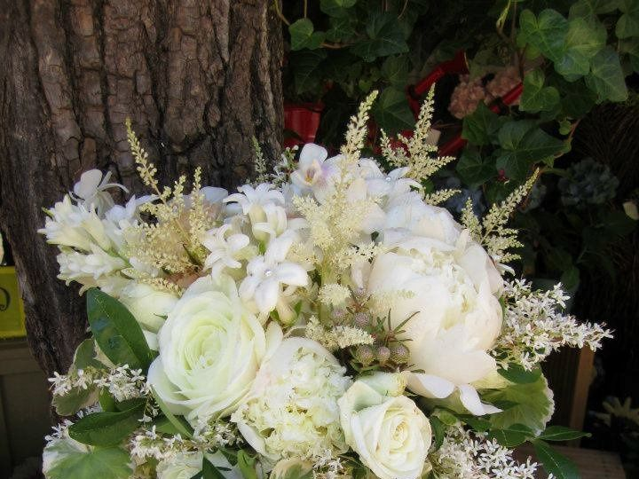 Tmx 1354892148860 Fiddlehead3 Cashiers, North Carolina wedding florist