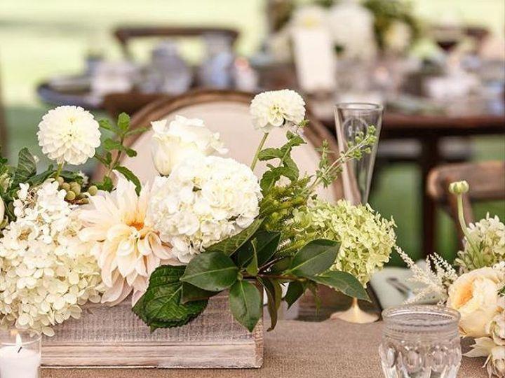 Tmx 25009509 896040537224876 9210446569000665088 N 51 157056 Cashiers, North Carolina wedding florist