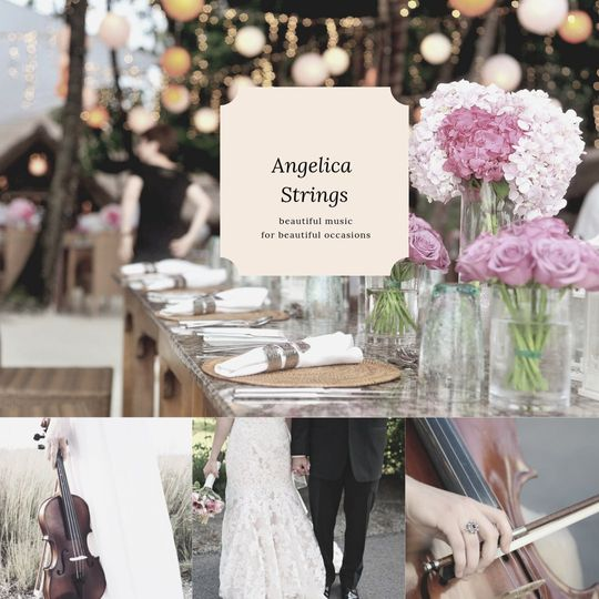 Angelica Strings