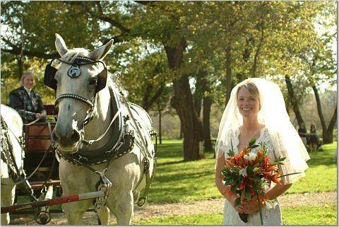 Tmx 1219511821671 Naber7 Houston wedding transportation