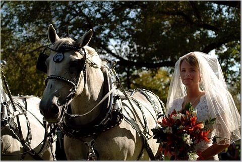 Tmx 1219511905671 Naber9 Houston wedding transportation