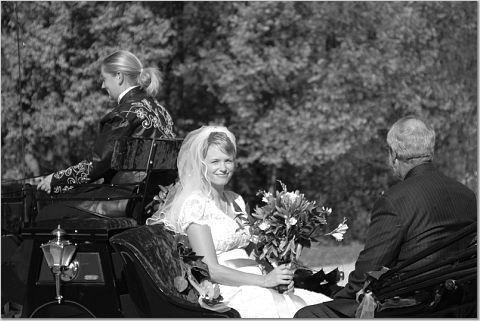 Tmx 1219511962593 Naber4 Houston wedding transportation