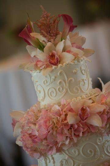 marcys close up cak