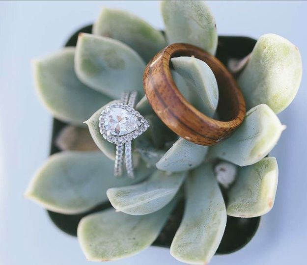 Rings on succulent favors #eco