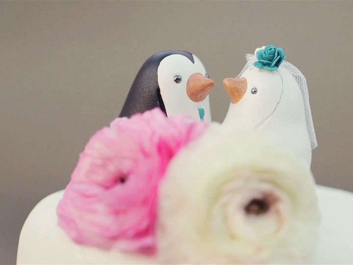 Tmx 1521580142 0e8ac62c15de5300 1521580140 0702bee7d7091327 1521580132628 8 8 Vacaville wedding videography