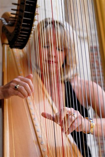Kansas City Harpist, Dedra Coffee, seen through the strings of her harp, performs your choice of...