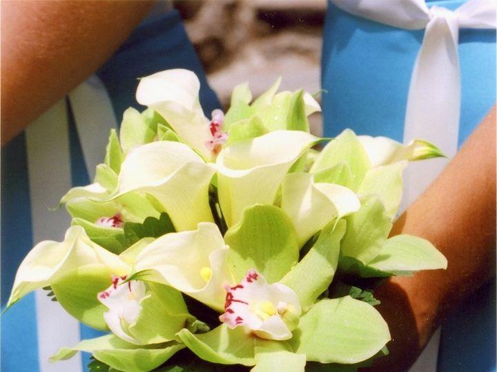 Tmx 1348172160278 Bridesmaidcallalilies Ambler, PA wedding florist