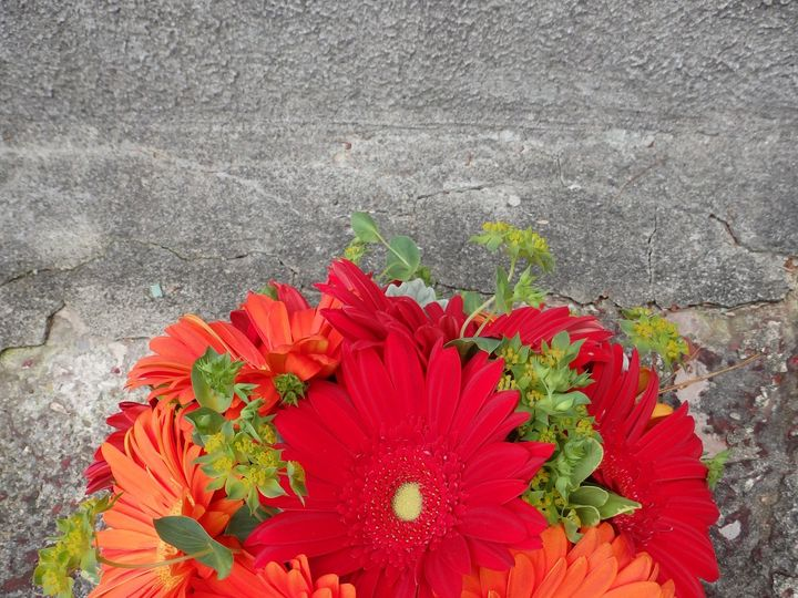 Tmx 1460410793442 Pa020236 Oneida wedding florist