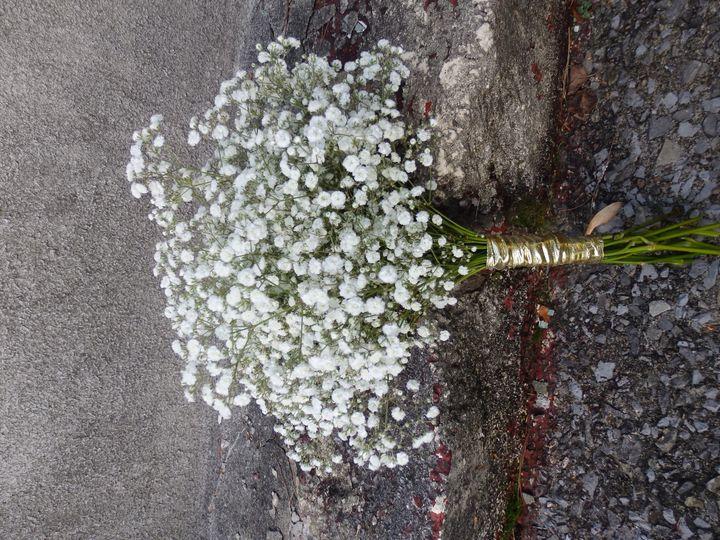 Tmx 1460412407609 P8221262 Oneida wedding florist