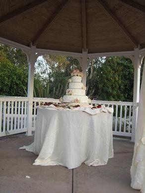 IMG 0936 cake
