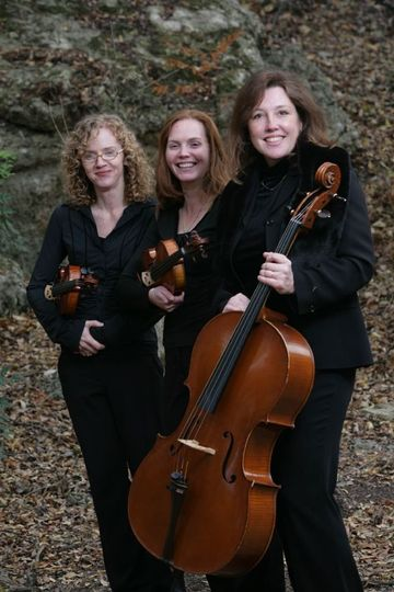 Cellist and violinists
