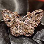 Tmx 1328622478494 Smbutterfly Van Alstyne wedding florist