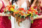 Marie Nicole Weddings image