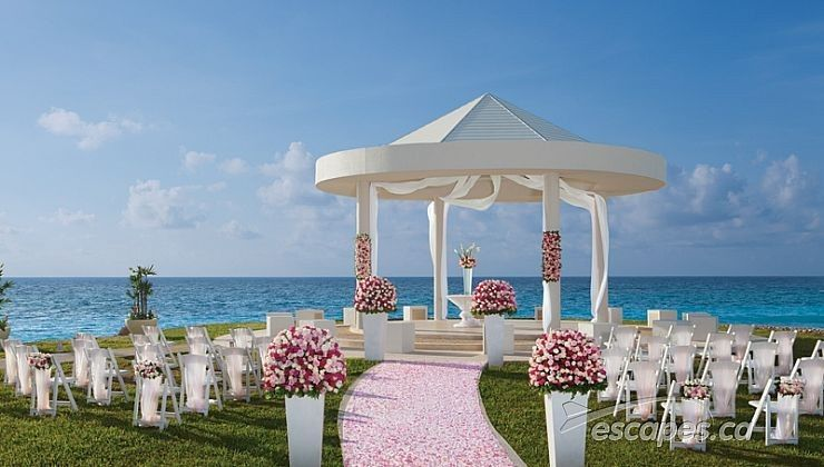 Pink aisle runner and beach wedding setup