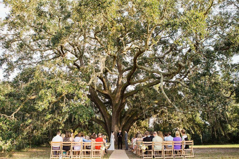 b144a4df74ed38b9 Our Wedding Photos 0158 X3