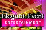 Elegant Event Entertainment Lighting image