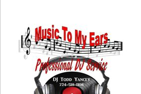 Music 2 Your Ears Professional DJ Service