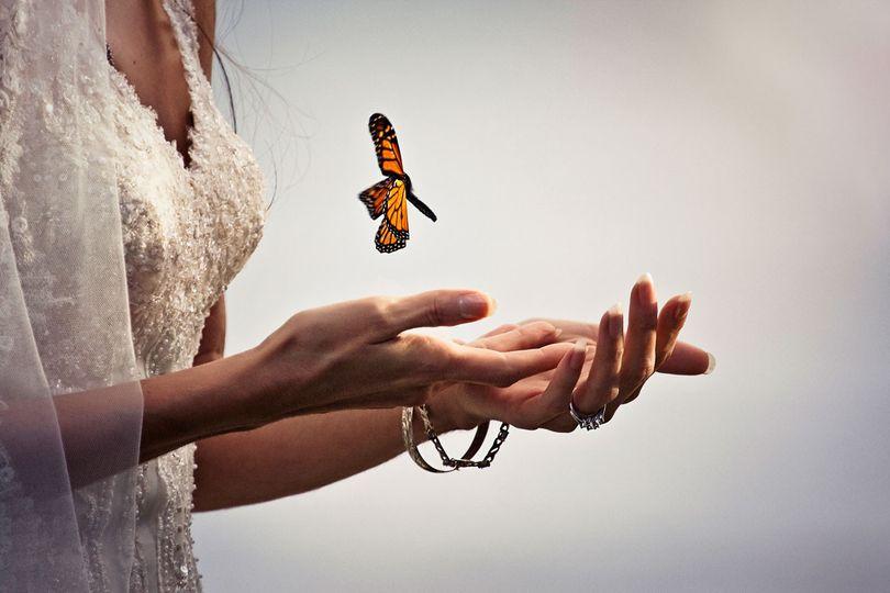 butterfly release wedding photo