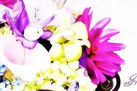 Freelance Florista