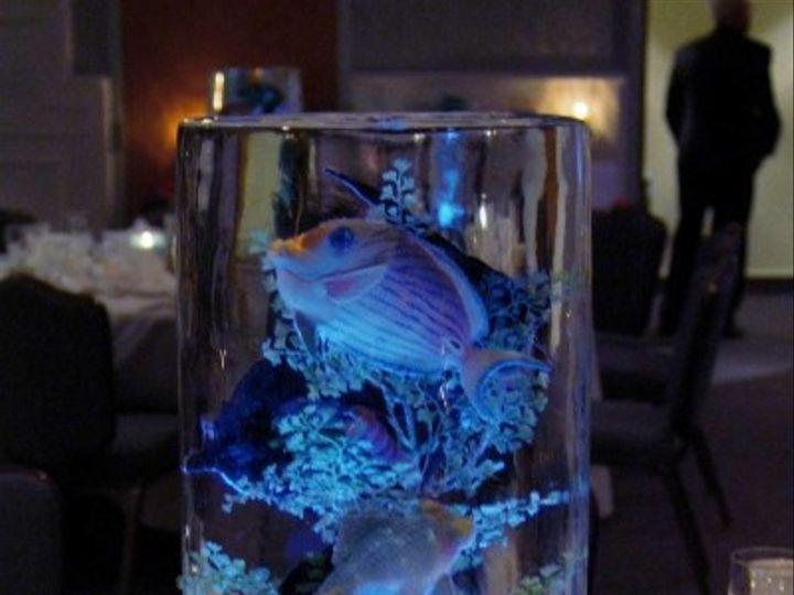 Tmx 1400172288406 Centerpieces    Aquariuml Virginia Beach wedding eventproduction