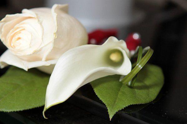 Tmx 1333400627545 IMG3962 Long Island City wedding florist