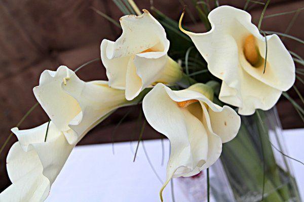 Tmx 1333400657589 IMG4443 Long Island City wedding florist