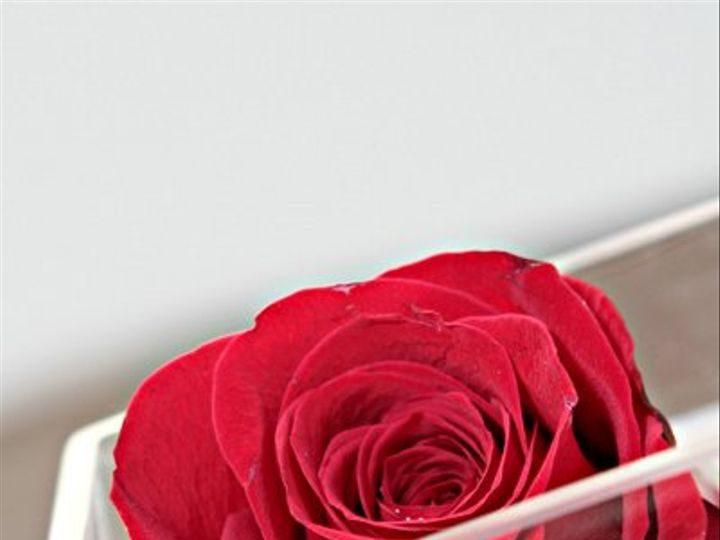 Tmx 1333400670906 IMG4982 Long Island City wedding florist