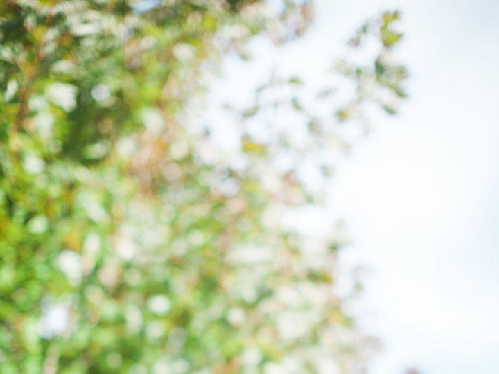 Tmx 1485190493798 Bvd 1 Ledger, MT wedding photography