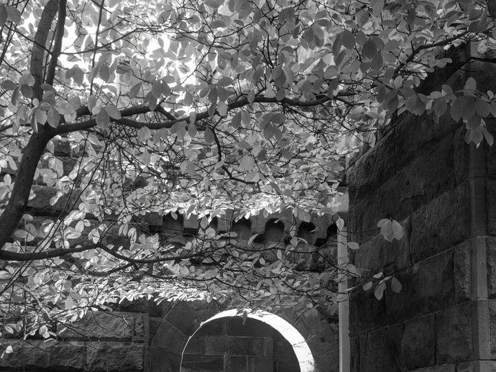 Tmx Aa 455 51 194956 Roselle Park, NJ wedding videography