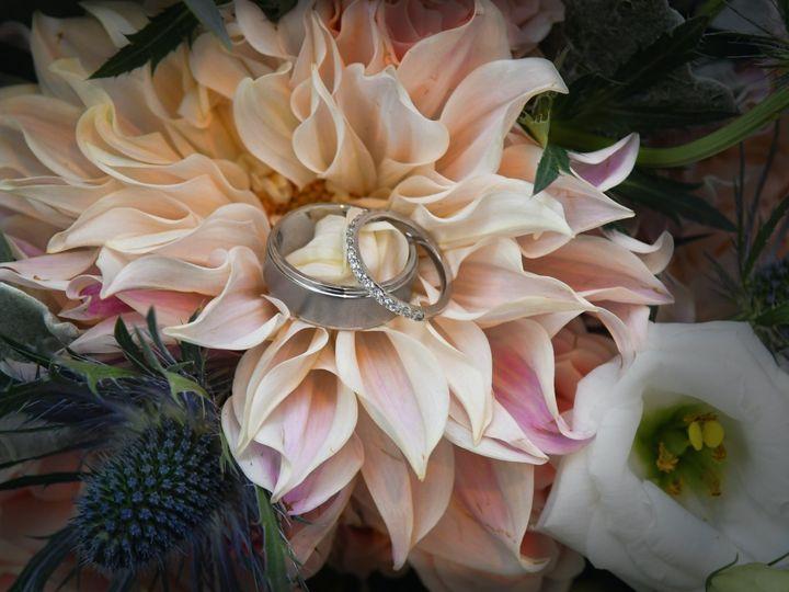 Tmx Afb7 51 194956 158450545699499 Roselle Park, NJ wedding videography