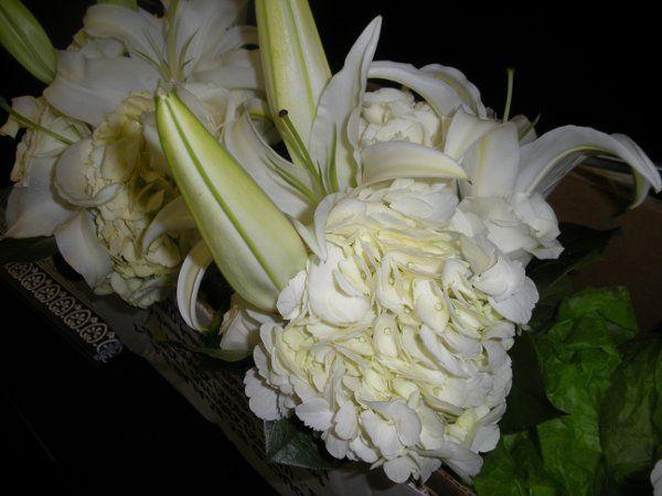 spring2010052