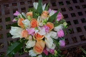 Collections Floral, INC.