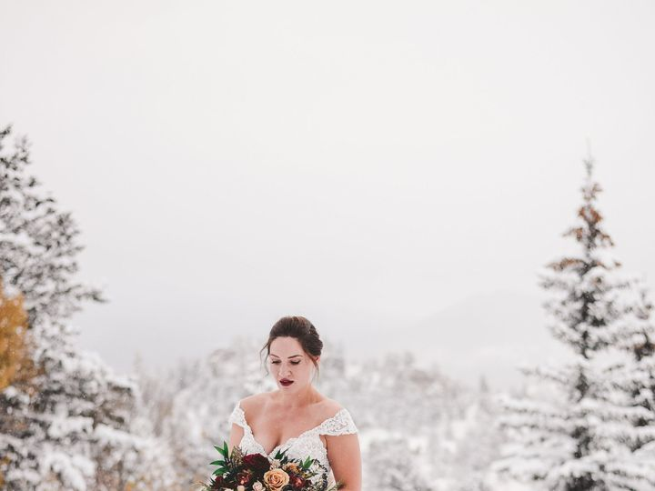 Tmx Nicole Whitcomb Favorites 0013 51 791066 1571945569 Fort Collins, CO wedding planner