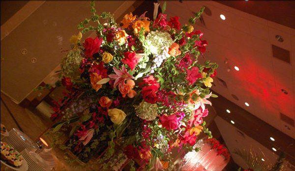 Tmx 1217355131340 BlueRed15 Greencastle wedding invitation
