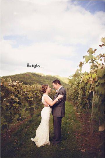 381587b5ea25fddb wedding in the vineyard