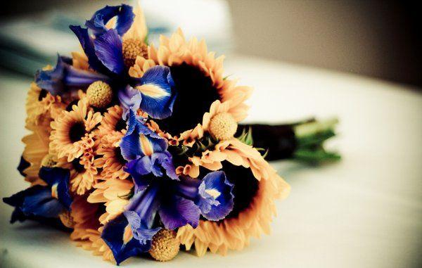 Tmx 1334626106576 Flowers East Brunswick wedding videography