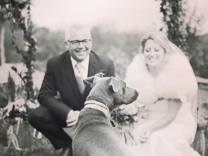 Tmx 1508160292213 Meghan And Tim 0196 Burlington, Vermont wedding photography