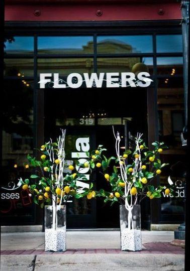 My Viola-Floral Studio