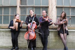 Blackstone Valley String Quartet & Ensembles