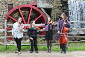 Blackstone Valley String Quartet & Ensembles