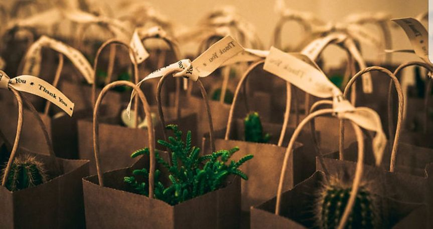 Plant favors with a rustic theme. Can be personalised.