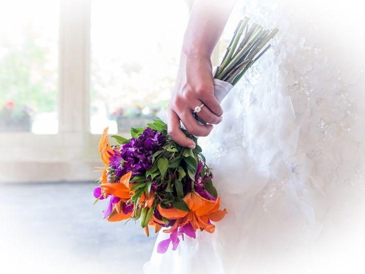 Tmx 1389662365555 Holiday   26 Waterbury wedding photography