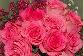 Westside Flowers & Gifts, LLC