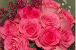 Westside Flowers & Gifts, LLC image