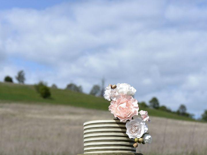 Tmx 1384168899748 Olive  Scallop Salem wedding cake