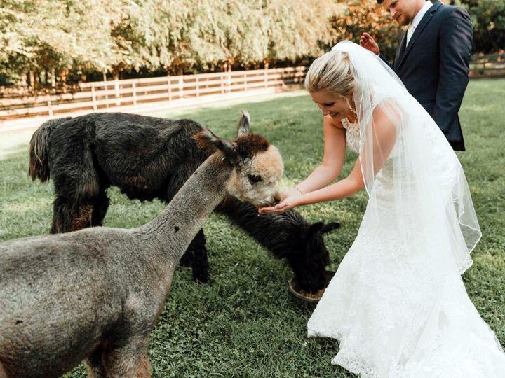 Tmx Couple With Alpacas 51 443366 1571281444 Andrews wedding venue